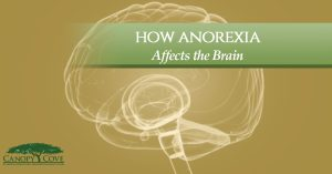 How Anorexia Affects the Brain
